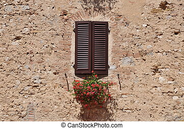 Window with flower on a wall