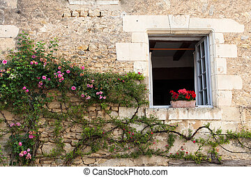 window with flowers of geranium and roses
