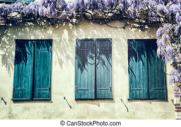 windows, blaues, altes , shutters.