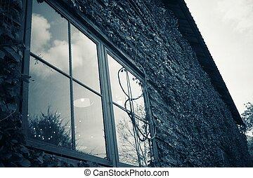 windows, con, albero