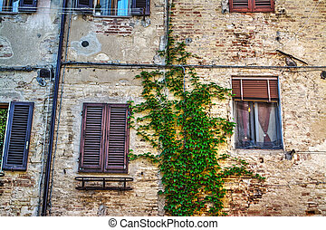 windows in a rustic wall in Tuscany