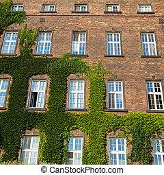 Windows of Wawel Castle in Krakow