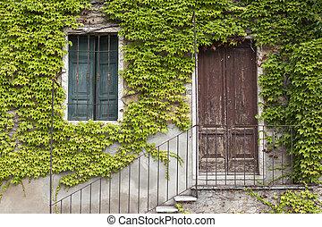 windows, pietra, vecchio, scale, parete, porta, ivy., coperto, villaggio, italiano