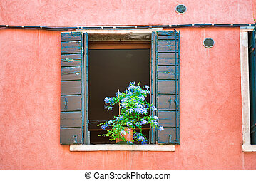 Windows with flowers in old house