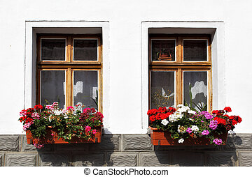 Windows with flowers - Window of old house with flowers, ...