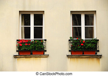 Windows with planters