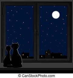 windowsill., gatti, due, seduta