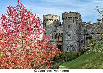 Windsor castle at autumn