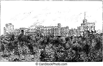 Windsor Castle, vintage engraving.