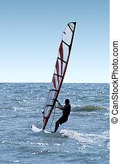 Windsurfer on waves of a sea 2