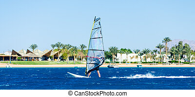 surfer rides on the background of the beach with a hotel and palm trees in Egypt Dahab