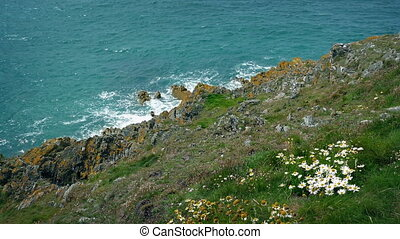 Windswept Grassy Cliffs By The Sea - View down to the sea...
