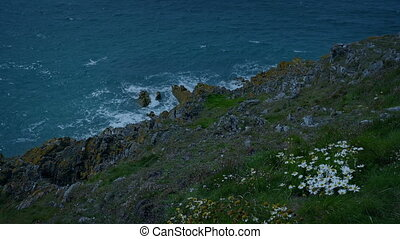 Windswept Grassy Cliffs In The Evening - View down to the...