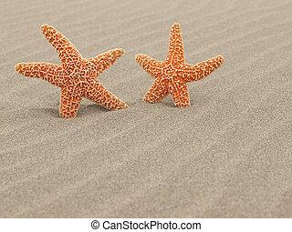 windswept, starfish, dois, ondulações, praia areia
