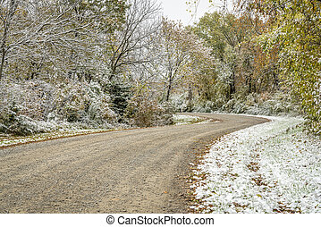 Windy gravel road through forest