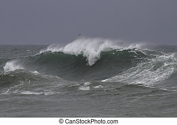 Windy wave in a stormy day