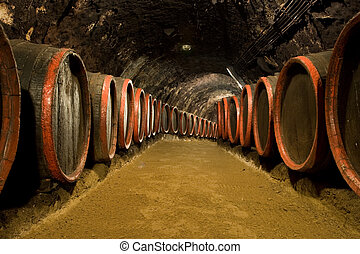 Wine barrels in winery cellar - Old wine barrels are stored...