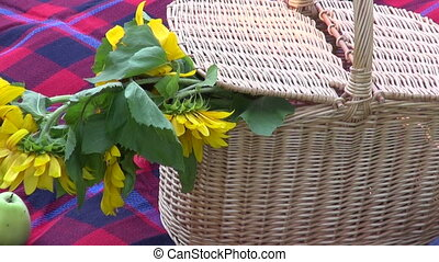 wine bottle and picnic basket with flowers on park grass