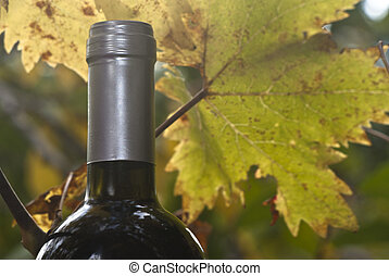 wine bottle and young grapevine leaf