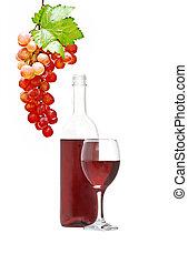 Wine bottle, goblet, and grapevine