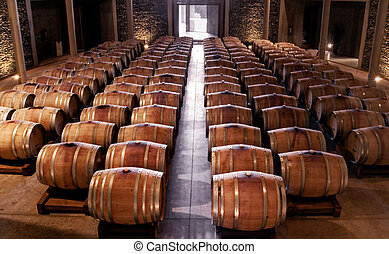 Wine cellar - Aligned barrels in wine cellar
