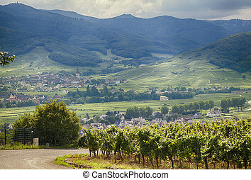country side of Alsace region