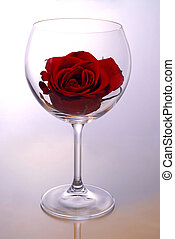 Wine glass with rose - Red rose blossom inside of a red wine...