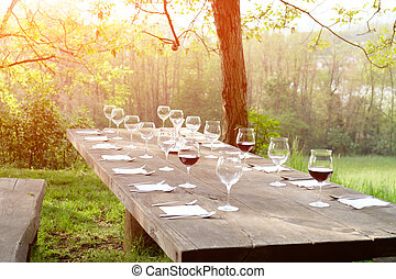 wine glasses on a wooden table in the countryside