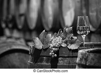 Wine Grapes in a Wine Cellar in black and white