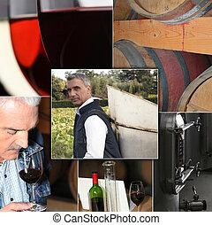wine industry process