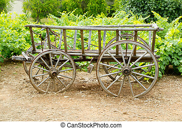 wine old wood horses cart in grape field
