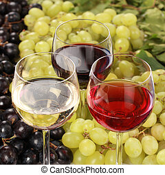Red wine, white wine and rose wine in glasses with selective focus