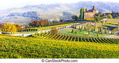 Wine tour on Italy. Piedmont, Barolo village and castle. Autumn vineyards scenery