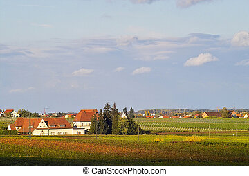 village in the wineyards