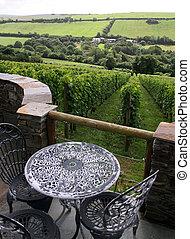 Wine vineyard with furniture