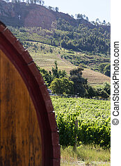 Winebarrel and Winelands - Close up of an out of focus...