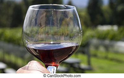 Wineglass filled with red wine with background of vineyard