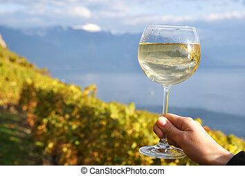 wineglass, mão, contra, vinhedos, em, lavaux, região, suíça