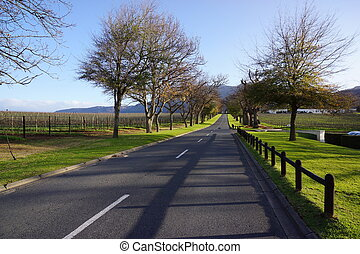 Winelands in South Africa - Winelands, South Africa-July 30,...