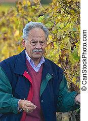 winemaker, mûrir