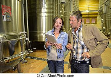 winemaker, tablette, regarder, client, établissement...