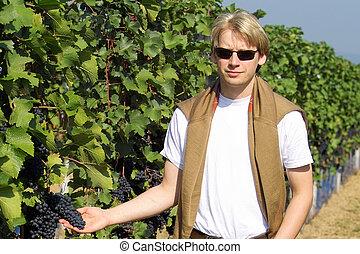 winemaker cheking the wineyards