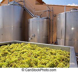 winemaking, タンク, ブドウ, chardonnay