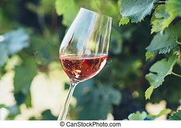 winery., esterno, vino assaggiando