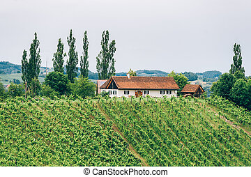 Winery in Southern Styria with a Farm house