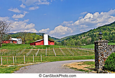 Winery in the Valley