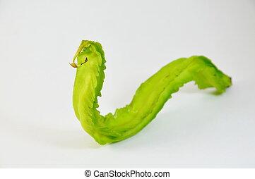 wing bean curve like snake