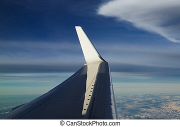 Wing of the airplane