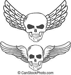 winged, crânios, isolado, branco, fundo, vetorial