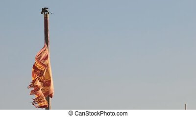 Winged flag of Republic of venice. Lion of St. Mark....